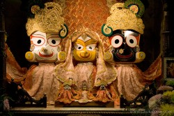 Sri Sri Jagannath, Baladev and Subhadra