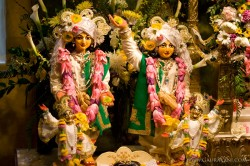 Sri Sri Doyal Nitai and Vijay Gauranga
